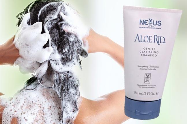 Aloe Rid detox shampoo